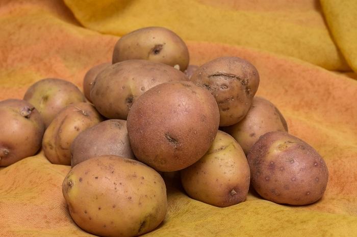 Ako sadiť zemiaky sa traduje z generácie na generáciu