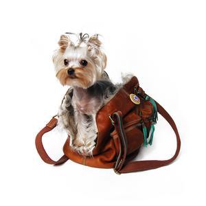 Taška pre psa na rameno