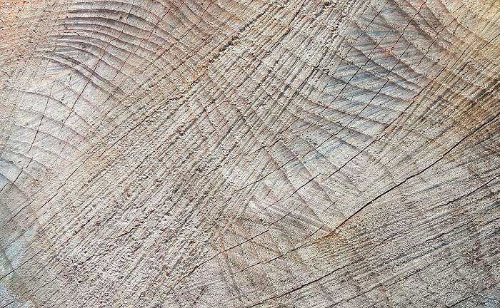 Farba na drevo na zimu